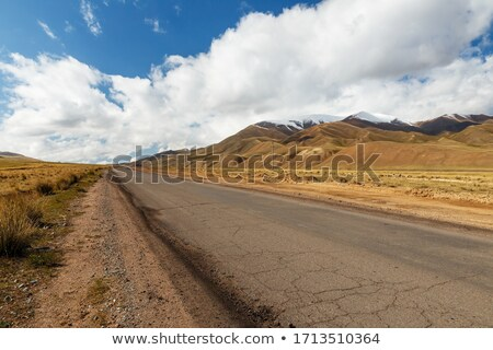 autumn scenery near a empty road stock photo © capturelight