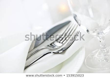 elegáns · étterem · fine · dining · evőeszköz · magas · kulcs - stock fotó © Donvanstaden