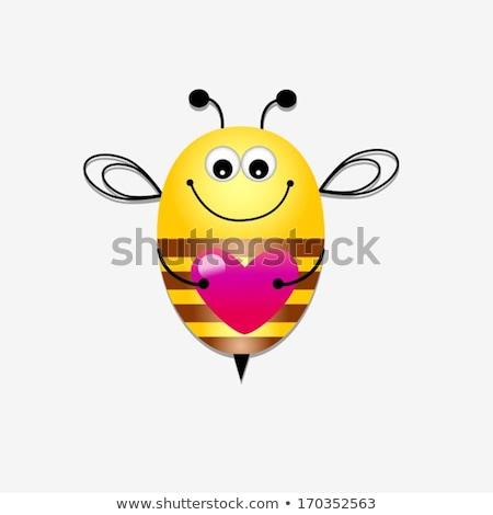 abelha · amor · ilustração · coração · voar · mel - foto stock © zsooofija