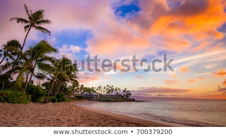 West Maui, Hawaii. Stock photo © iofoto