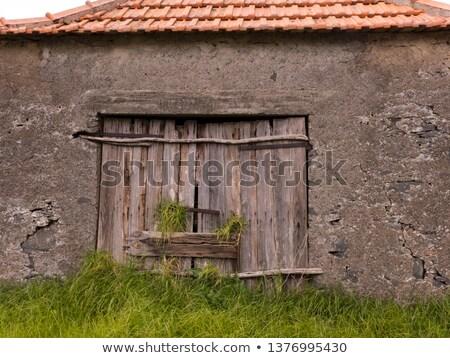 Zárva ablak szirt illusztráció iroda szem Stock fotó © bluering