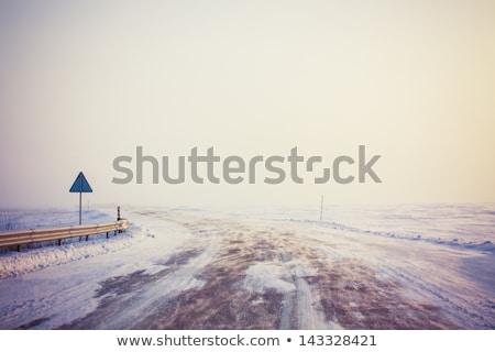 nacht · verkeer · berg · weg · roemeense · licht - stockfoto © ssuaphoto