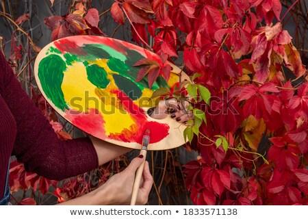 Pincel blanco primer plano educación mesa pintura Foto stock © wavebreak_media
