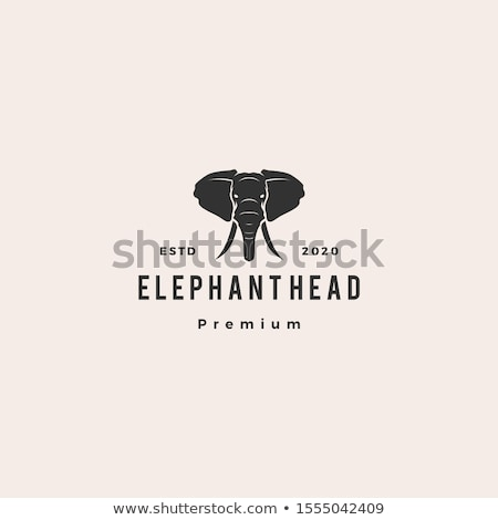 Imagine de stoc: Elefant · cap · icoană · logo-ul · vector · simbol