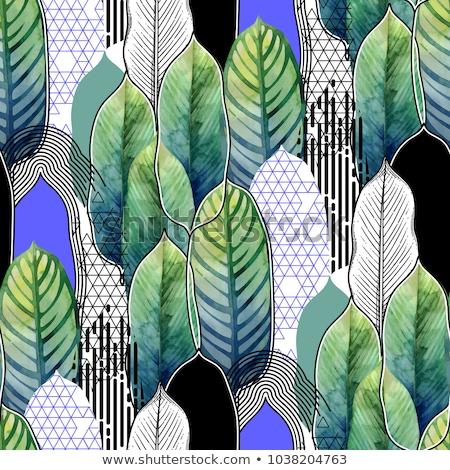 Spa seamless pattern Stock photo © netkov1
