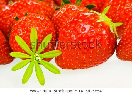 свежие клубники воды красный клубника завтрак Сток-фото © CarmenSteiner