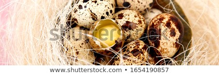 Banner with Quail eggs on pink background with willow branch. Stock photo © Illia