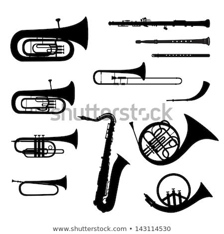 wind instruments icon set Stock photo © ayaxmr