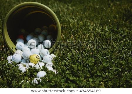 golflabda · lyuk · zöld · fű · golf · piros - stock fotó © latent