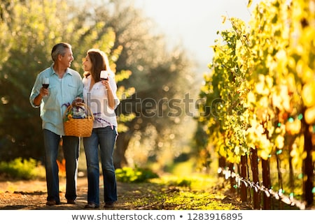 Dois homens caminhada vinha primavera vinho feliz Foto stock © photography33