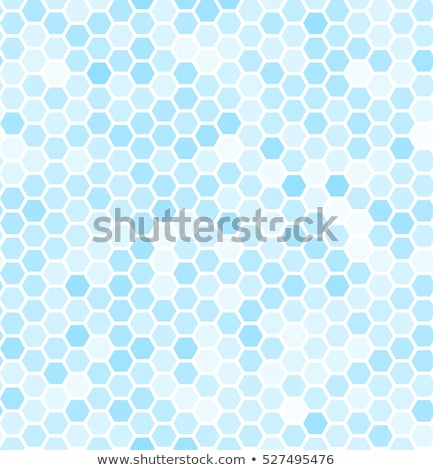Stockfoto: Hexagonal Tiles Covered With Snow