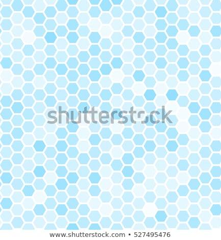 padló · csempék · kép - stock fotó © 5xinc