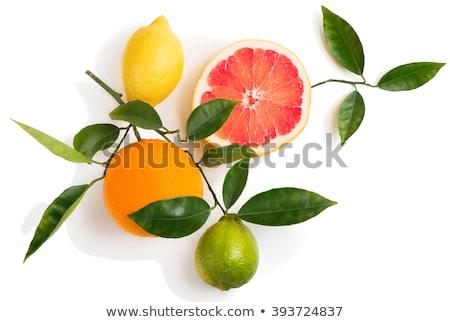 ayarlamak · çapraz · narenciye · meyve · yalıtılmış · beyaz - stok fotoğraf © boroda