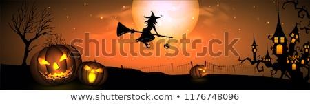 belo · bruxa · mulher · voador · cabo · de · vassoura · halloween - foto stock © vectomart