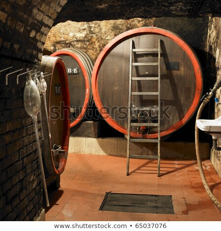 wine cellar litomerice czech republic stock photo © phbcz
