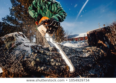 Lumberjack working with chainsaw Stock photo © filmstroem