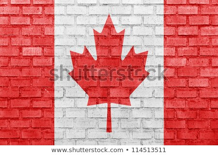 flag of canada on brick wall stock photo © creisinger
