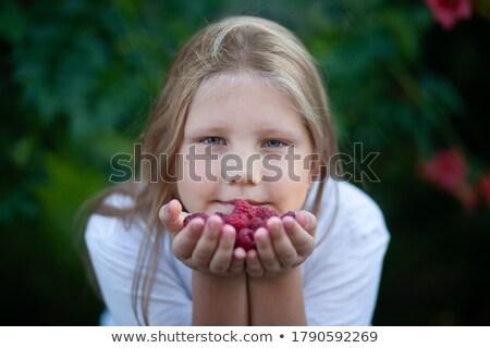lächelnd · halten · Himbeeren · Frau - stock foto © dash