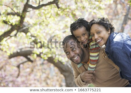 Cseresznyevirág tavasz természet levél kert háttér Stock fotó © LianeM
