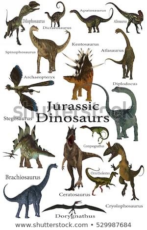 dinossauro · norte · américa · tarde · 3d · render · 3D - foto stock © aliencat