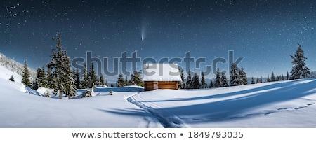 Photo stock: Hutte · neige · faible · bois · pin · forêt