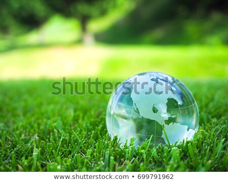 üveg · földgömb · Föld · fű · zöld · fű · mutat - stock fotó © grazvydas