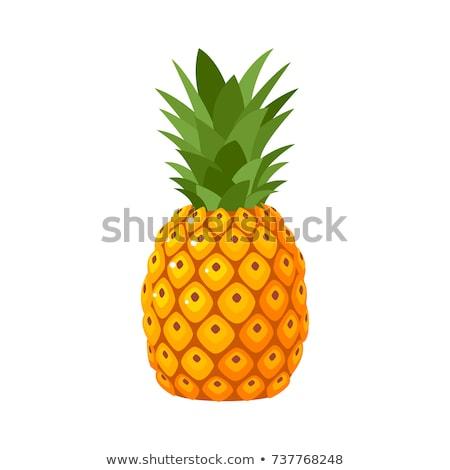 Ananas illustratie vector xxl voedsel Stockfoto © UPimages