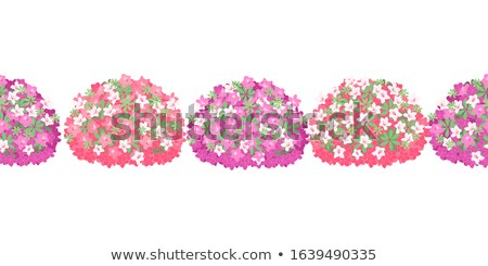 Azalea in pink color Stock photo © kawing921
