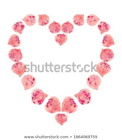 Szöveg 14 rózsaszirmok izolált fehér piros rózsa Stock fotó © bloodua
