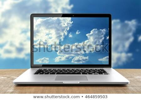 Lcd izlemek vektör iş Internet Stok fotoğraf © burakowski