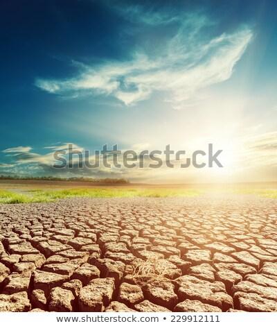 Dramatisch hemel droogte aarde licht donkere Stockfoto © mycola