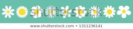 çiçek · vektör · ikon · simge · çiçek · yaz - stok fotoğraf © hermione