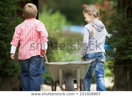 Iki oynama el arabası bahçe çocuklar erkek Stok fotoğraf © monkey_business