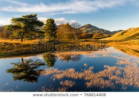 lake · district · sfondo · montagna · ponte · rock · Europa - foto d'archivio © chrisga