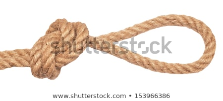 Lariat Loop Knot Stock photo © danielbarquero