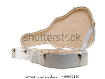 гитаре · случае · мягкой · электрической · гитаре · изолированный · белый - Сток-фото © ozaiachin