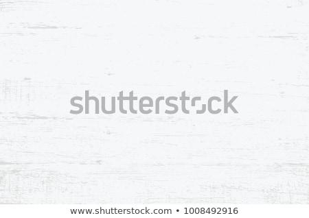 Vetor vintage branco madeira parede projeto Foto stock © H2O
