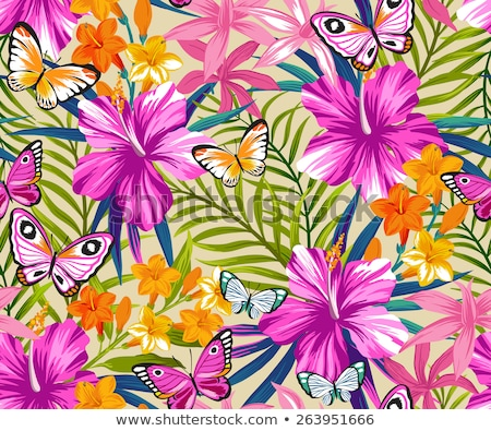 Stockfoto: Hibiscus And Butterflies Background