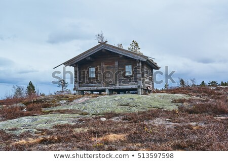 early spring in the mountains, Norway Stock photo © master1305