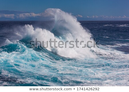 Breaking waves. Atlantic Ocean. Tenerife, Canary Islands. Spain Stock photo © amok