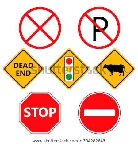 trafik · koni · ikon · dizayn · Internet - stok fotoğraf © netkov1