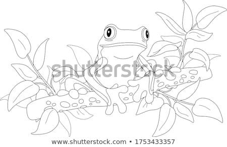 Stock fotó: Levelibéka · szín · levelek · óriás · színes · rózsaszín