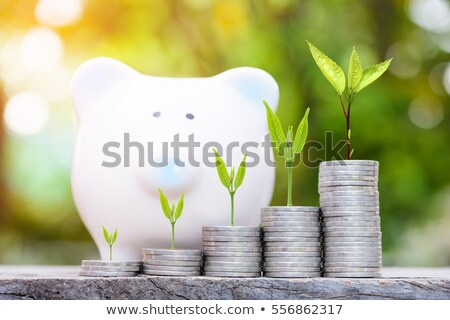 Close up of a green piggy bank Stock photo © andreasberheide