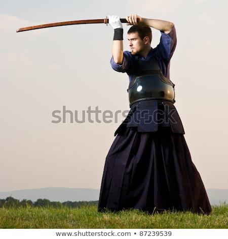 истребитель · позируют · древесины · спорт · мужчины · самураев - Сток-фото © razvanphotos