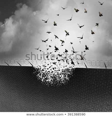 break down walls stock photo © lightsource