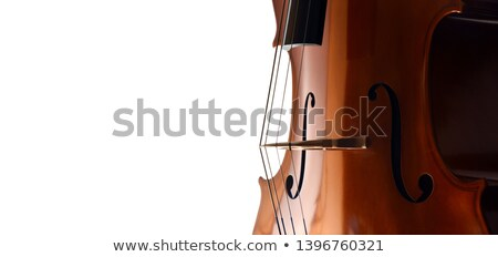 Cello strings closeup Stock photo © FreeProd