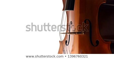 tar · ponte · macro · primo · piano · musicale · string - foto d'archivio © freeprod
