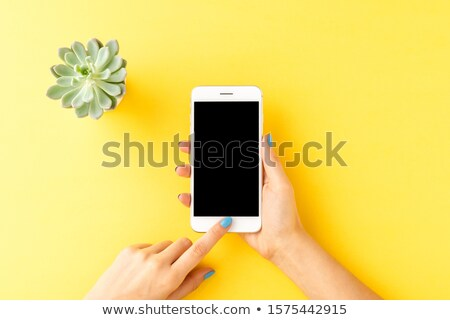 An empty blue template with yellow flowers Stock photo © bluering
