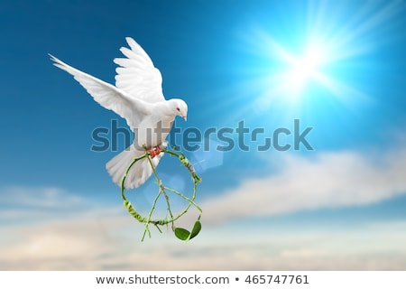 world peace Stock photo © get4net
