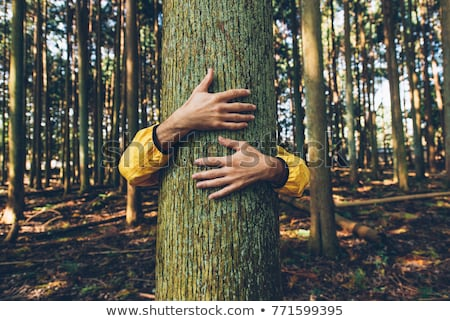 hugging a tree stock photo © iko